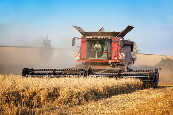 Mid-West Farm Wheat Harvest