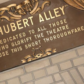 New York's Theatre District-Shubert Alley